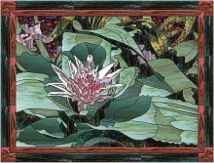 stained glass pink bromeliad