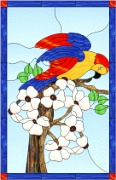 Stained Glass Cabinet Door Pattern Parrot In Dogwood